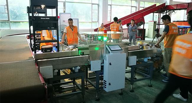 Ali Express Sorting Center - Checkweigher C101-15K Application